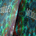 Cover of track Module 1 by Astrum & GriffenE
