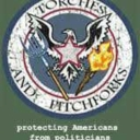 Cover of track Torches and Pitchforks by twistedtrees