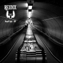 Cover of track Small Life by Reidix