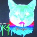 Cover of track pet graveyard by Ded Kat Shuffle