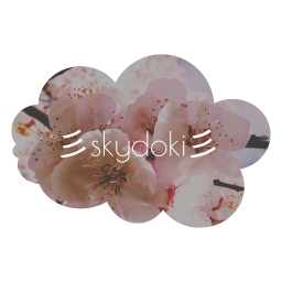 Avatar of user skydoki (its reinvent)