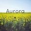 Cover of album Aurora by DubLion