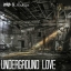 Cover of track Underground Love (Ft. DubLion) by xavrockbeats