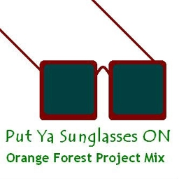 Cover of track Put Ya Sunglasses On (Orange Forest Project Club Mix) by Orange_Forest_Project