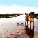 Cover of track bobby by rnzr
