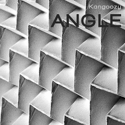 Cover of track Angle by Kangoozy