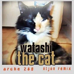Cover of track watashi the cat by ntjon