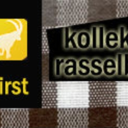 Cover of track First by kollektiv rasselbock