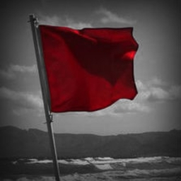 Cover of track The Red Flag by aneternaldesire