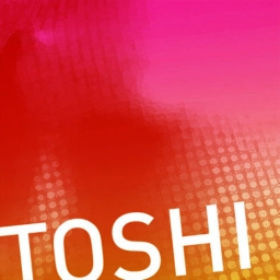 Cover of track Northern South by Toshi