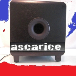 Avatar of user ascarice