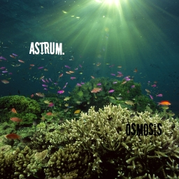 Cover of track Osmosis by Astrum