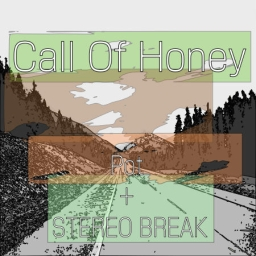 Cover of track Call Of Honey by pot