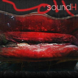 Cover of track rythmes by soundH