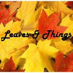 Cover of track Leaves & Things by Deadtransmission