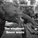 Cover of track The Elephant House music by Karl Vegas