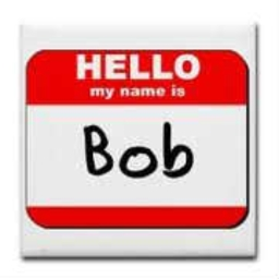 Cover of track hello my name is bob and i carnt... by 87