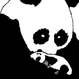 Avatar of user For The Love Of Pandas