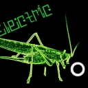 Cover of track Electric Cricket by CanonPipe