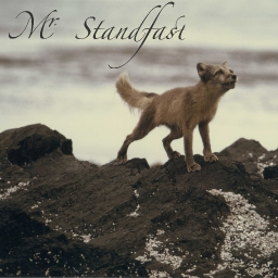 Cover of track audiotool radio 3 by Mr. Standfast