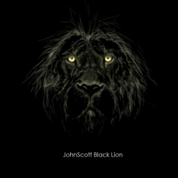 Cover of track A Hole In Your Heart (Someone Pulled The Bowstring) by JohnScott