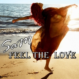 Cover of track SaM-Fell The Love by SaMDarren