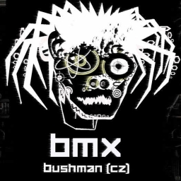 Cover of track bitch by Dj bushman Beat Maniax