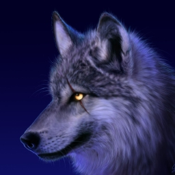 Avatar of user wolfhunter28