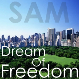 Cover of track SAM-Dream Of Freedom by SaMDarren