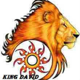 Cover of track king david by teye