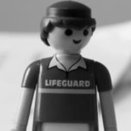 Avatar of user Lifeguard