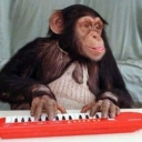 Cover of track Monkey Piano Player by Maeglin