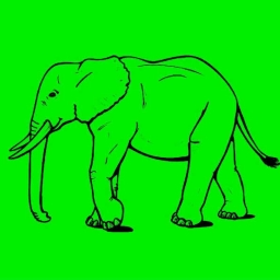 Cover of track Green Elephant by Ian Soza