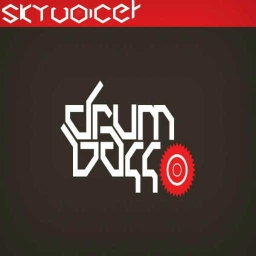 Cover of track Drum n' Bass 2. by Skyvoicer