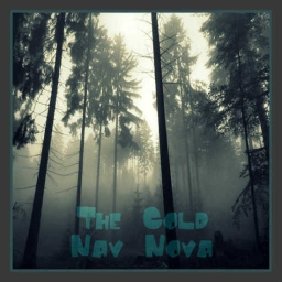 Cover of track The Cold by WYZE