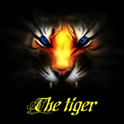 Avatar of user Tiger