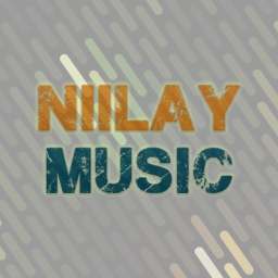 Avatar of user Niilay