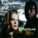 Cover of track Darkness - In My Dreams (Wolflund Mix) by Wolflund