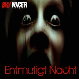 Cover of track Entmutigt Nacht by Skyvoicer