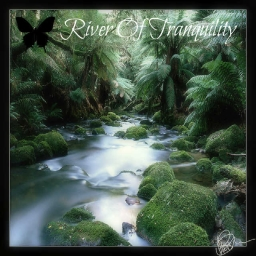 Cover of track River Of Tranquility by Skyvoicer