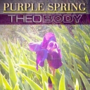 Cover of track PURPLE SPRING instrumental by TheoBody