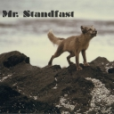 Cover of track Untitled by Mr. Standfast