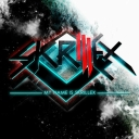 Cover of track My Name Is Skrillex by Skrillex is beast