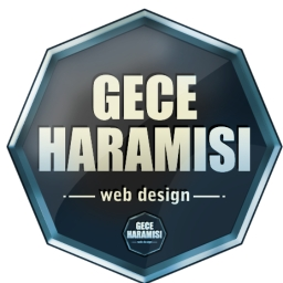 Avatar of user GeceHaramisi