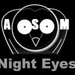 Avatar of user AOSOM + Night Eyes