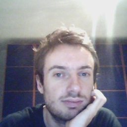Avatar of user Lorenzo Ferrone
