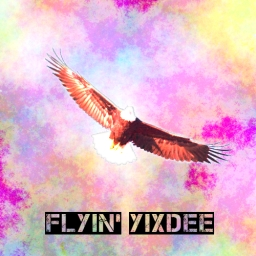 Avatar of user Flyin' Yixdee
