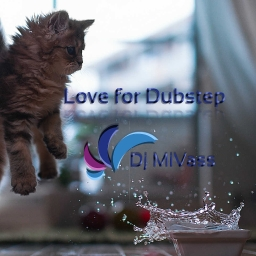 Cover of track Dubstep by Dj MiVass