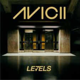 Cover of track Avicii-Levels (Club Mix) by KOPA