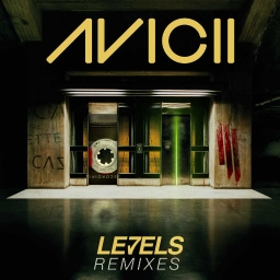 Cover of track Avicii-Levels (Zardj remix) by Zard|